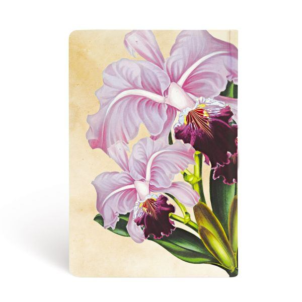 "Paperblanks Brazilian Orchid Mini 3 3/4"" x 5 1/2"" Journal"