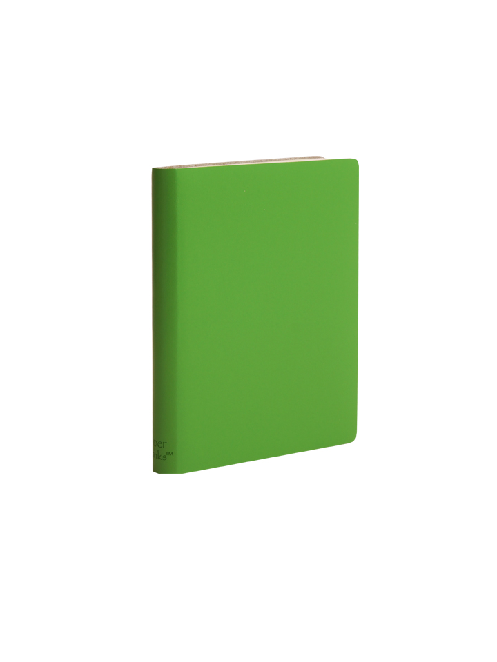 Paperthinks Pocket Plain Notebook Mint