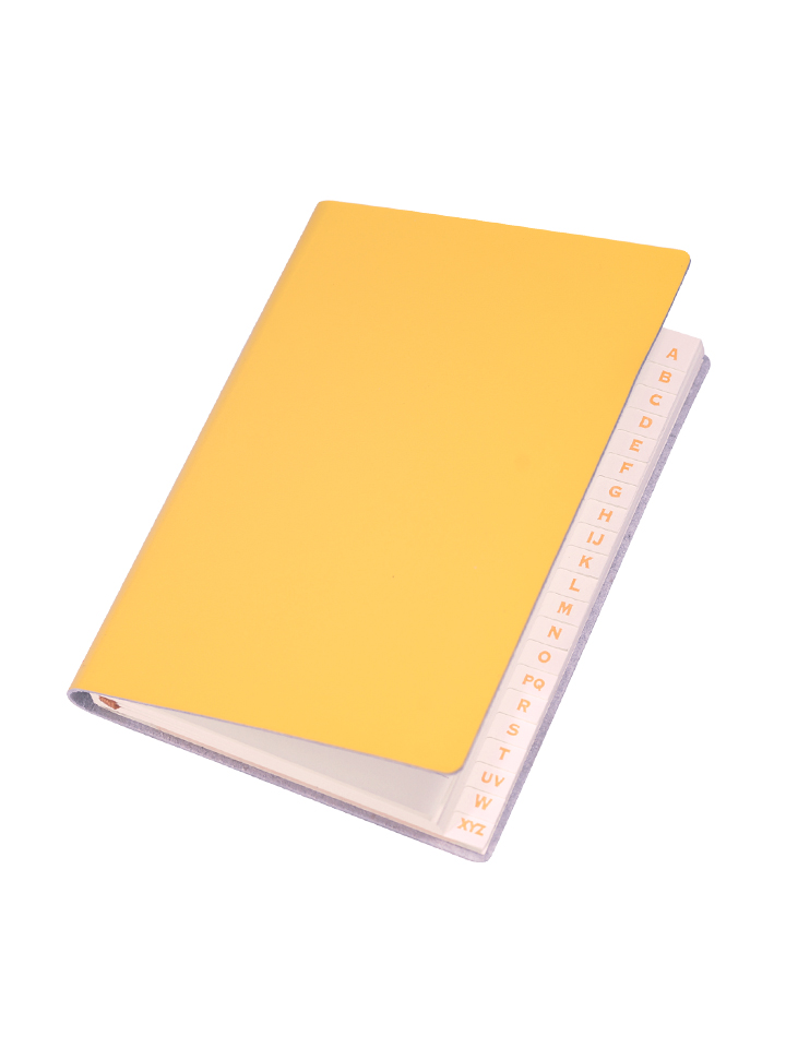 Paperthinks Slim Address Book Mango